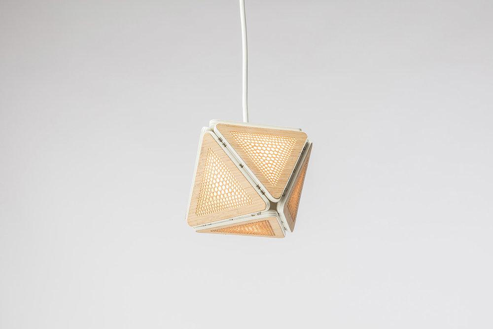 SMARTBUNCH Light Pendant