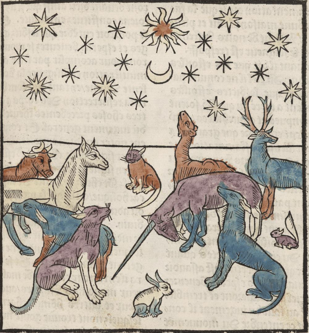 From Antoine Vérard's  L'Art   de bien viure  et de bien mourir ( 1494 )