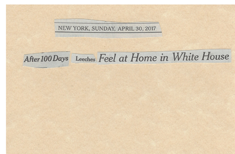 April 30, 2017 After 100 Days Leeches Feel at Home in White HouseSMFL.jpg