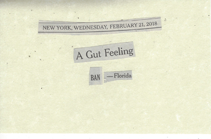 February 21, 2018 A Gut Feeling - Ban Florida SMFL.jpg