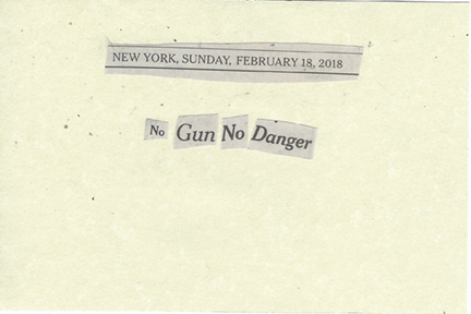 February 18, 2018 No Gun No Danger SMFL.jpg