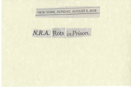 August 5, 2018 NRA Rots in Prison SMFL.jpg