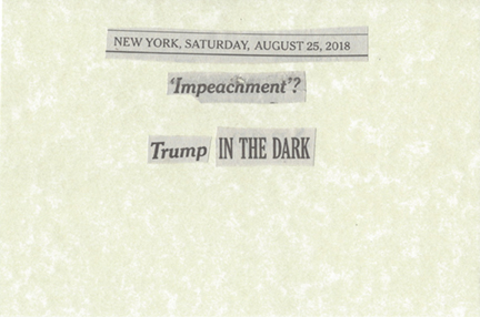 August 25, 2018 Impeachment Trump in the Dark SMFL.jpg