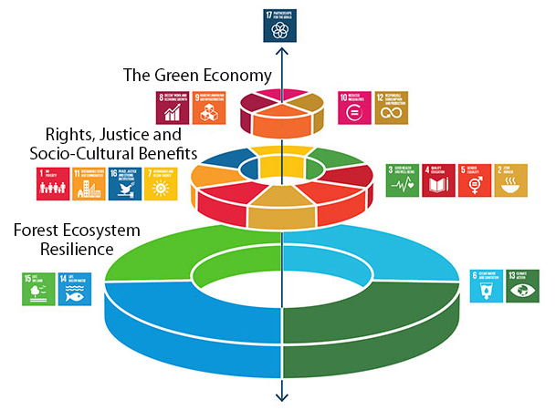 Figure 1.   A new way of viewing the Sustainable Development Goals (SDGs), where economies and societies are seen as embedded parts of the biosphere  (Image amended with the permission of Stockholm Resilience Centre;  http://www.stockholmresilience.org )
