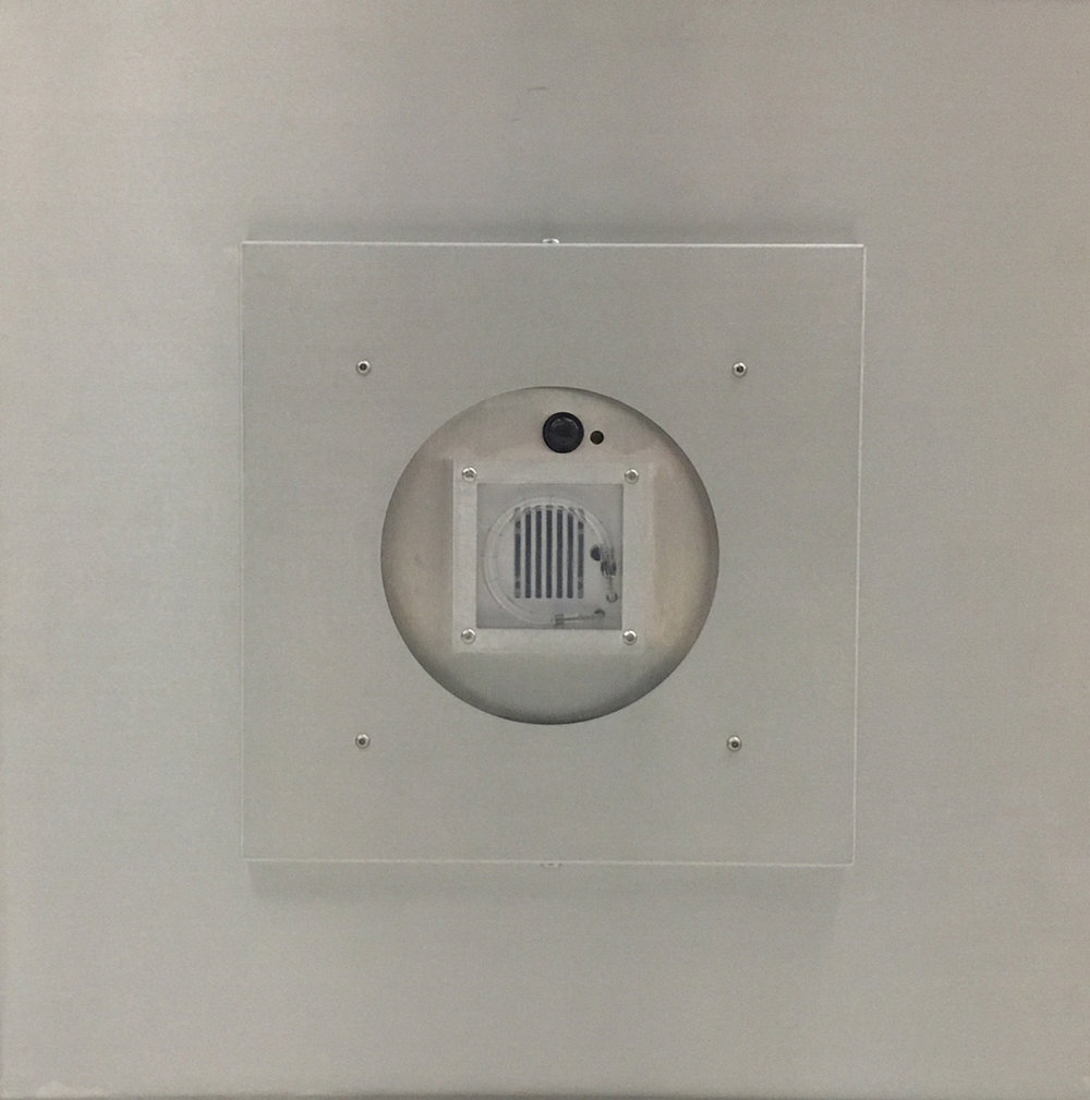 Bath Unit with Adapter Plate.jpg