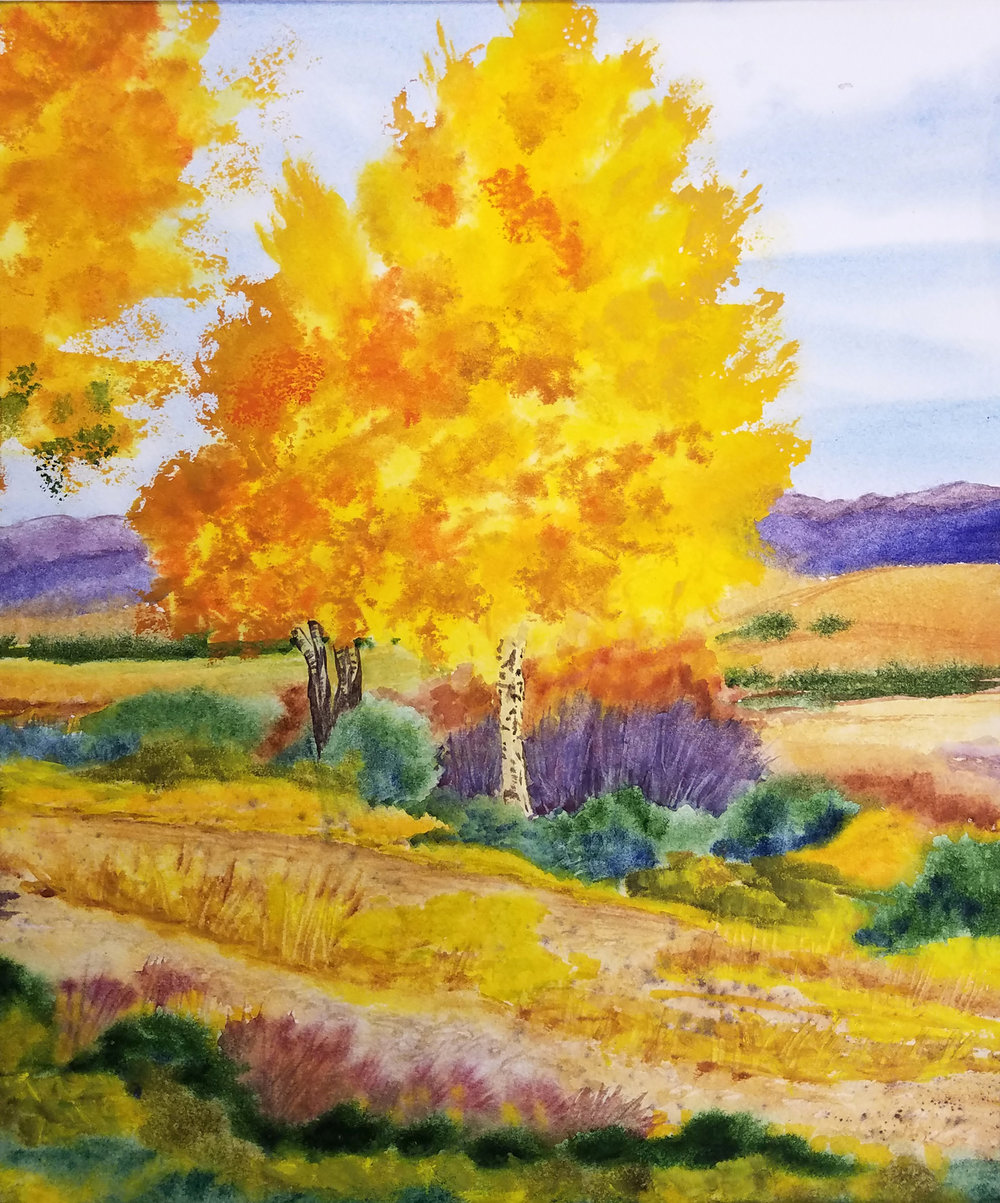 New Mexico Aspens in Autumn.jpg