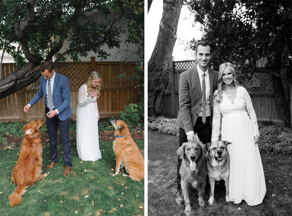 dog family bride groom.jpg