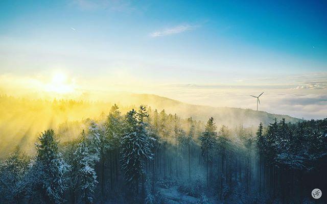 mmmmh.. sun 🤤 📸 #sonyalpha #lightroom - 12/2017 #️⃣ #sonyimages #landscape #winter #forest #fog #sunset #goldenhour #sunshine #frozen #cold #beautiful #photography #photooftheday #picoftheday #innviertel #austria #visitaustria #wanderlust #igers #igersaustria #1000thingsinaustria #panorama #explore #oberösterreich