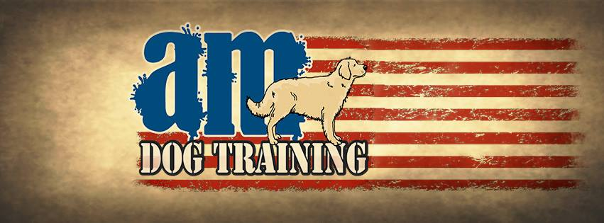 AM Dog Training
