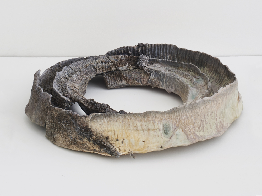 Jemila MacEwan,  Crater Rings, 2016