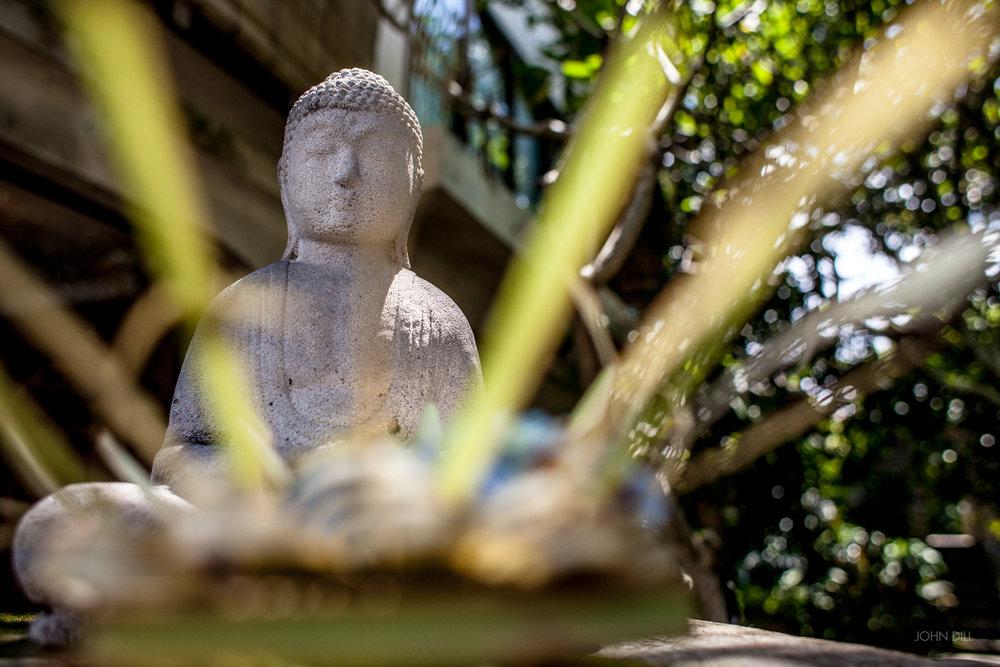 John_Dill-Bali-4.jpg
