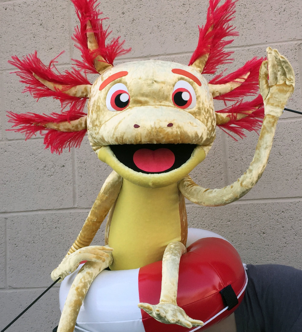 Axolotl 1.jpg