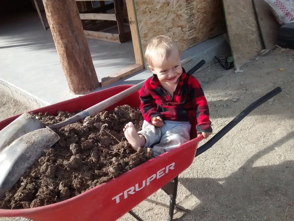 Ryan riding along....adding nitrogen-rich material to the compost pile!