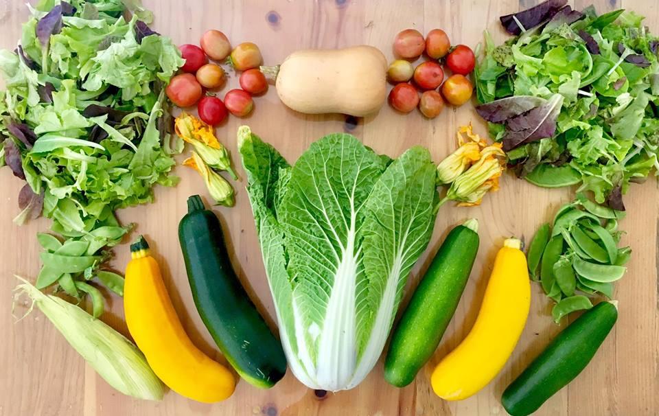 organic-produce-baja.jpg