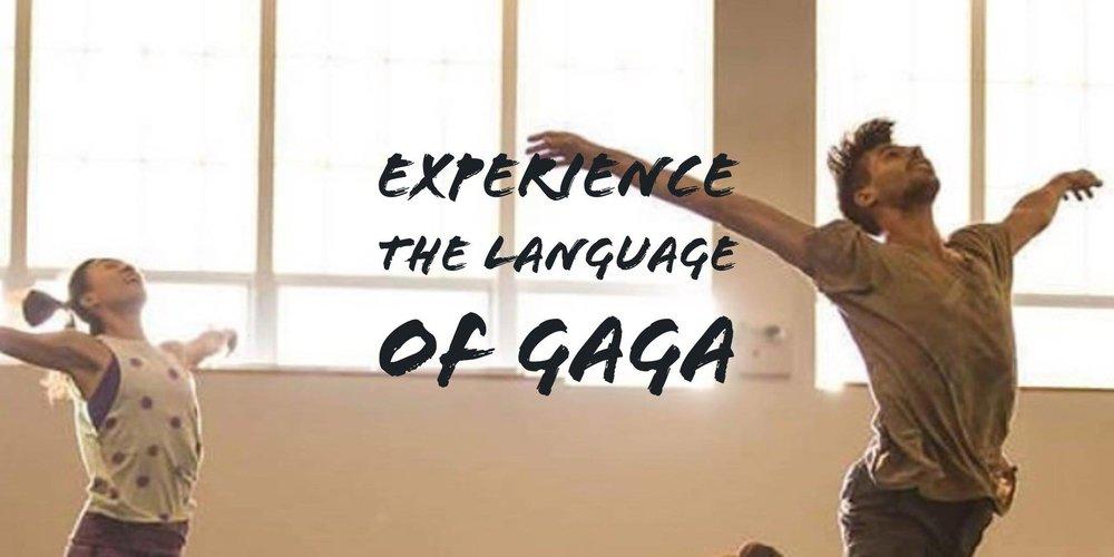 Mr Gaga 4.jpg