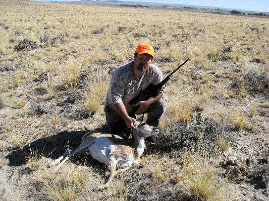 2011_wy_ant_deer3.jpg