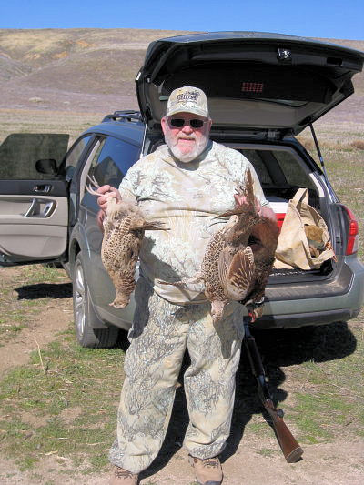 2011_pheasant2.jpg