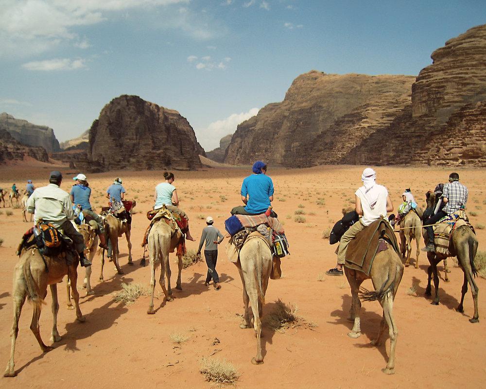Camels5x7blog.jpg