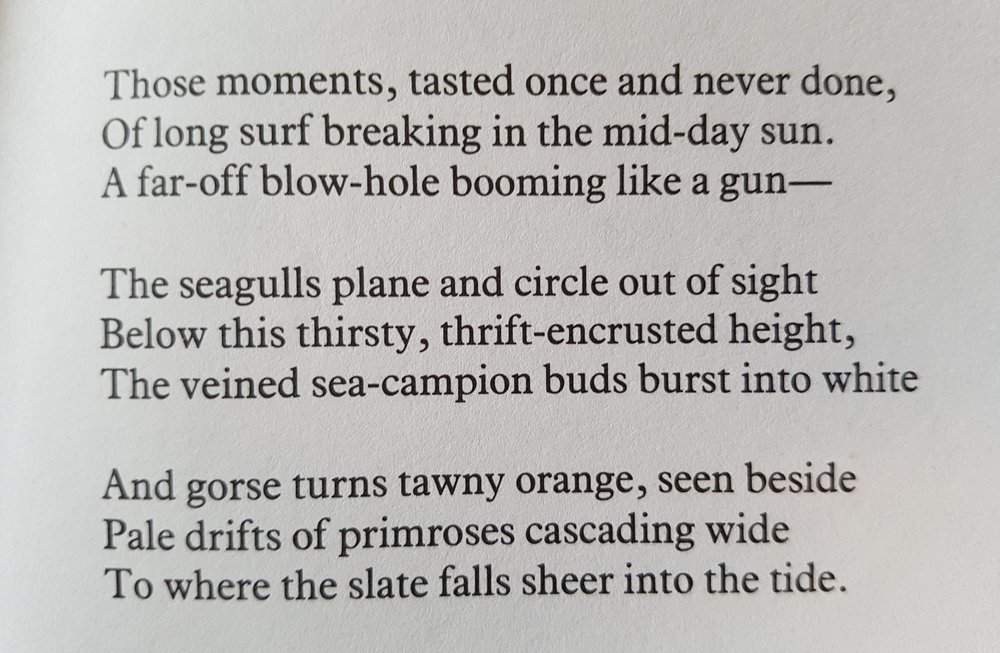 "Excerpt from ""Cornish Cliffs"" by John Betjeman"