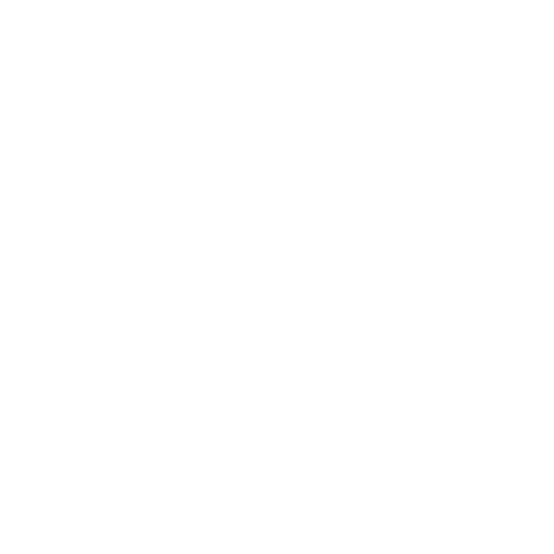 Lotus Physical Therapy and Wellness