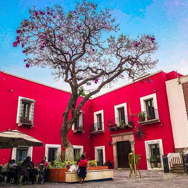 Loving this photo by @javiermohi. We just adore the use of bright and powerful colors on this building in Puebla.