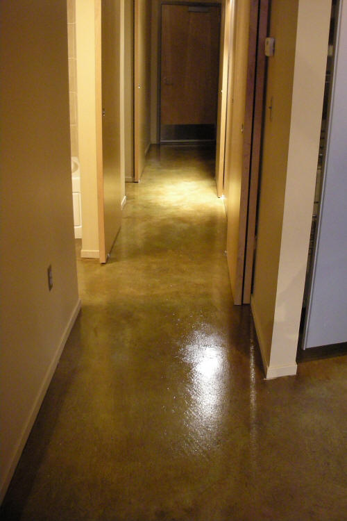 Loft Condominium Building Acid-Stained Concrete Hallway Floor