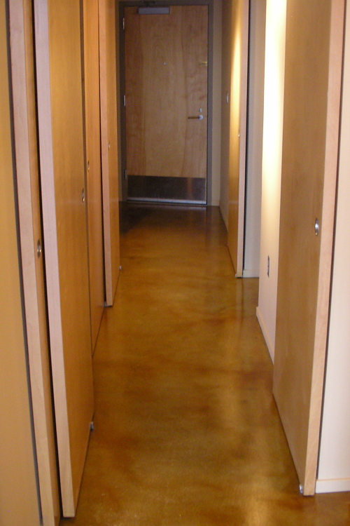 Luxury Loft Condominium Building Amber Acid-Stained Concrete Hallway Floor