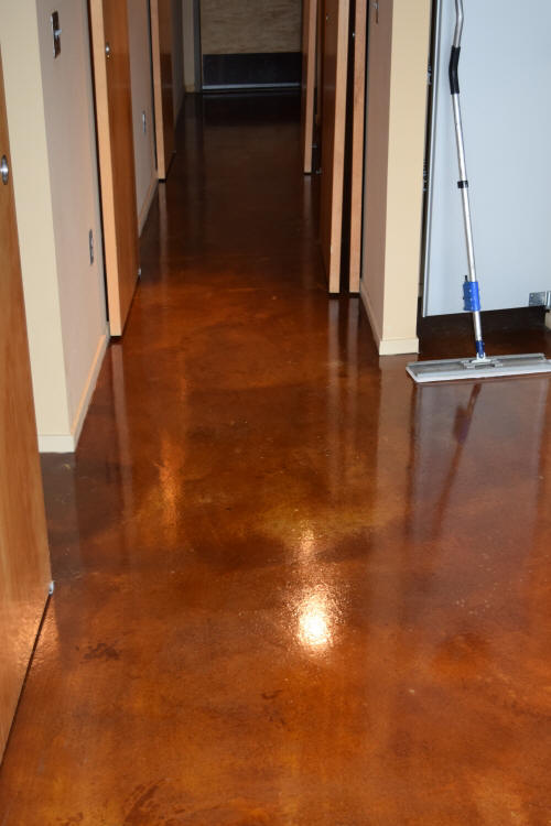 Luxury Loft Condominium Building Walnut Acid-Stained Concrete Hallway Floor