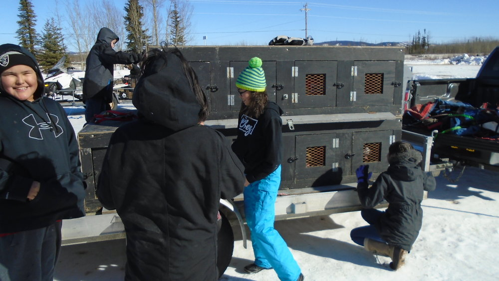 Mentasta Lake School students load dogs into box at Tok Track.