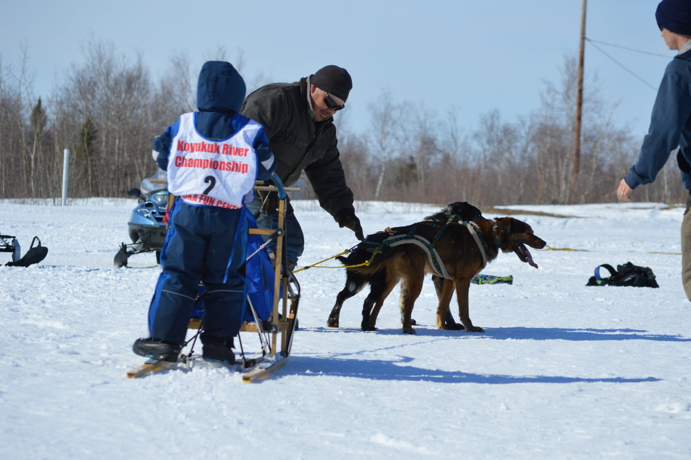 Huslia Jr. Carnival - Young musher near starting line.