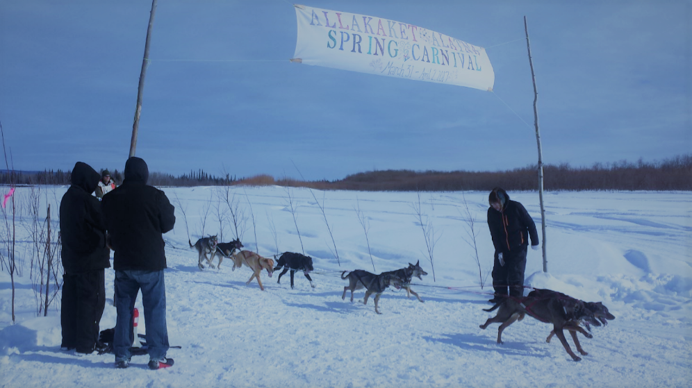 Allakaket Spring Carnival - Dog musher crossing Finish Line.