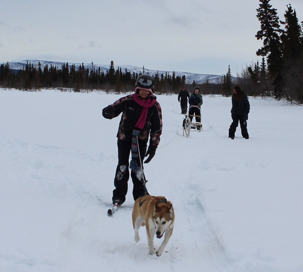 Students having fun skijoring and mushing.