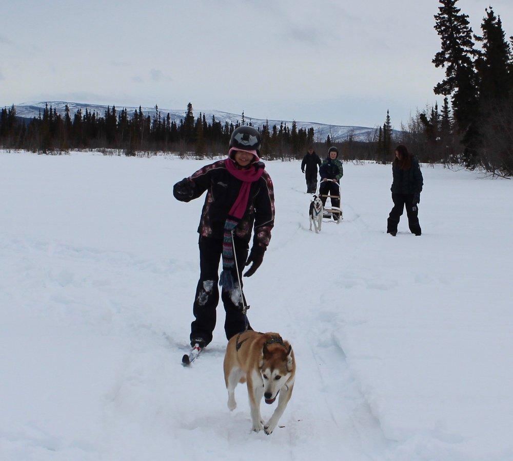 Students having fun skijoring and mushing.