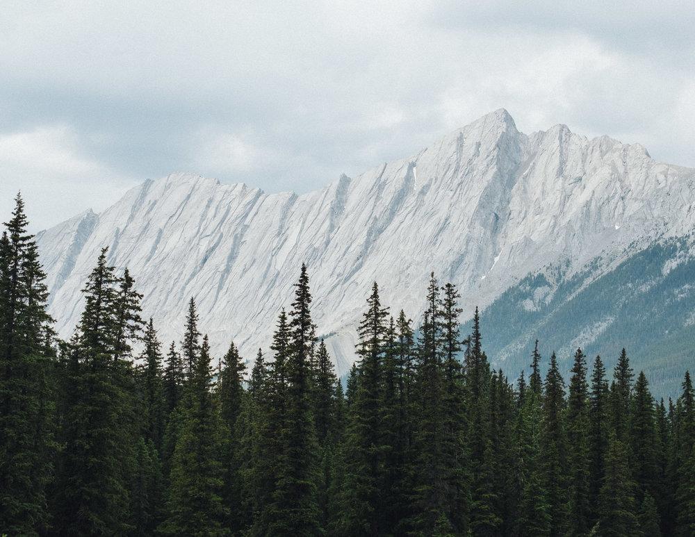 Jasper-10.jpg