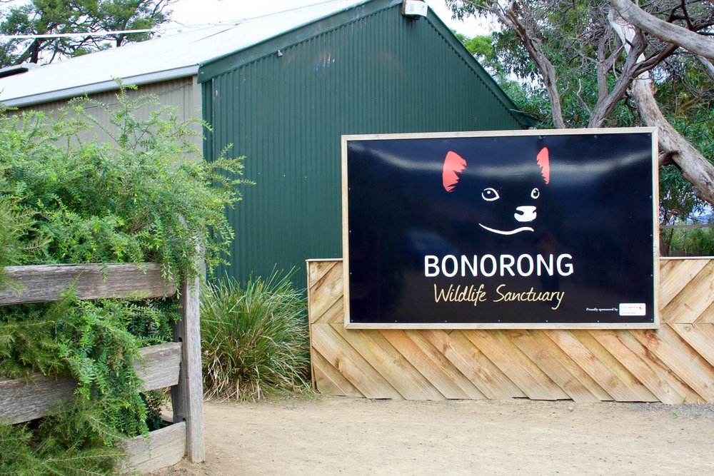Bonorong-FrontSign.jpg