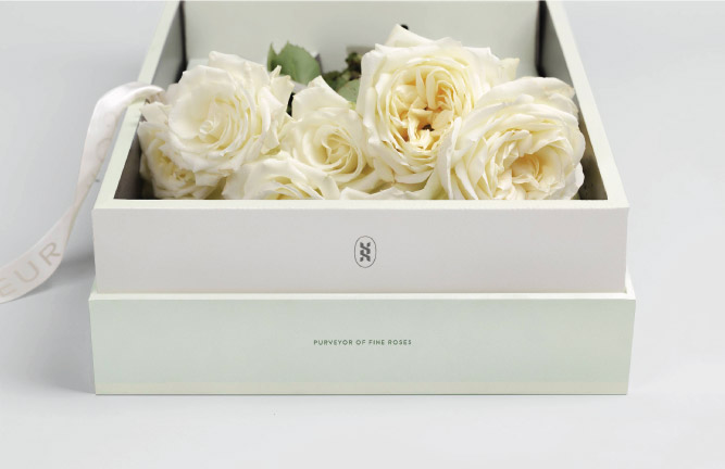 Roseur Open Box  With Bottom Detail and White, Sea Salt, Roses