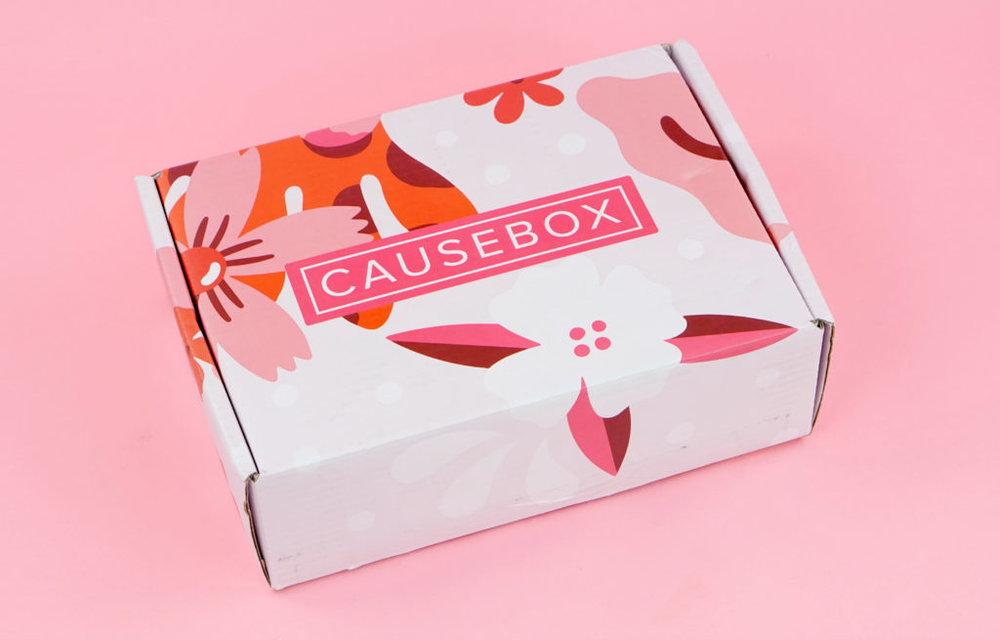 causebox1.jpg