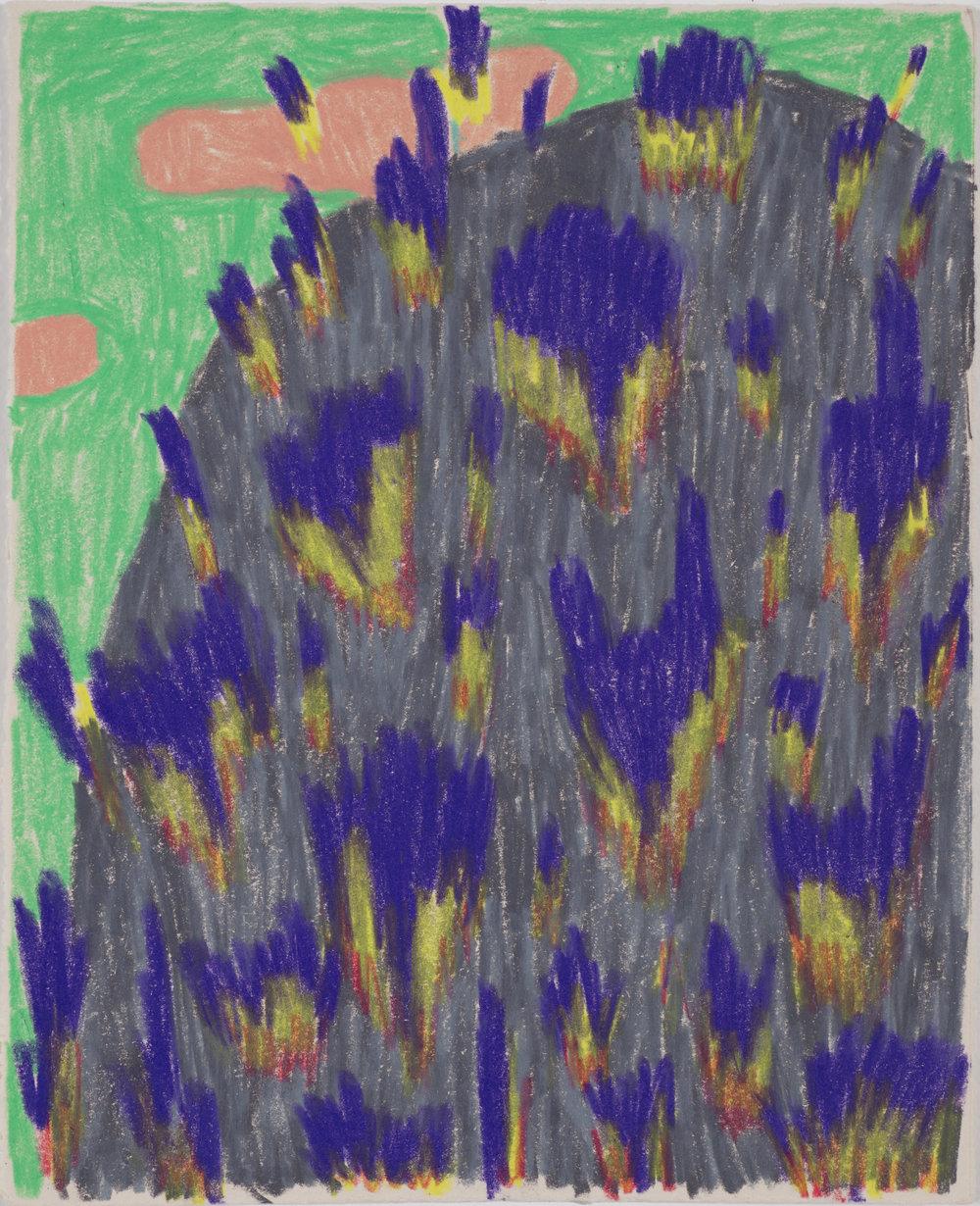 ziba_rajabi_enlightment in woods_2017_coloredpencil_6x7.5inch (1).jpg