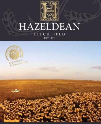 View Hazeldean Merino Brochure