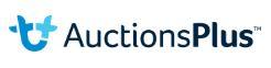 auctionsplus.JPG