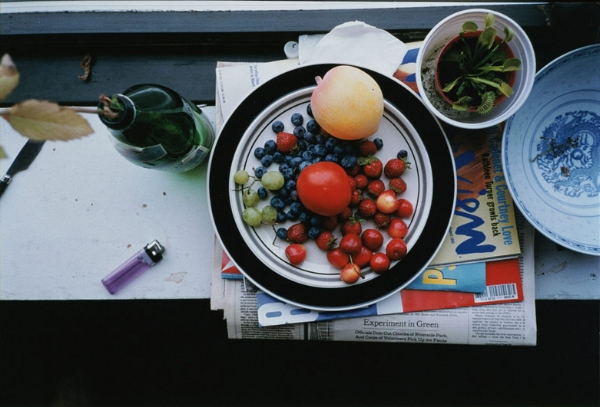 wolfgang-tillmans_summer-still-life-1995.jpg