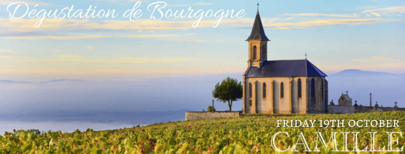 Dégustation de Bourgogne FB Cover.png