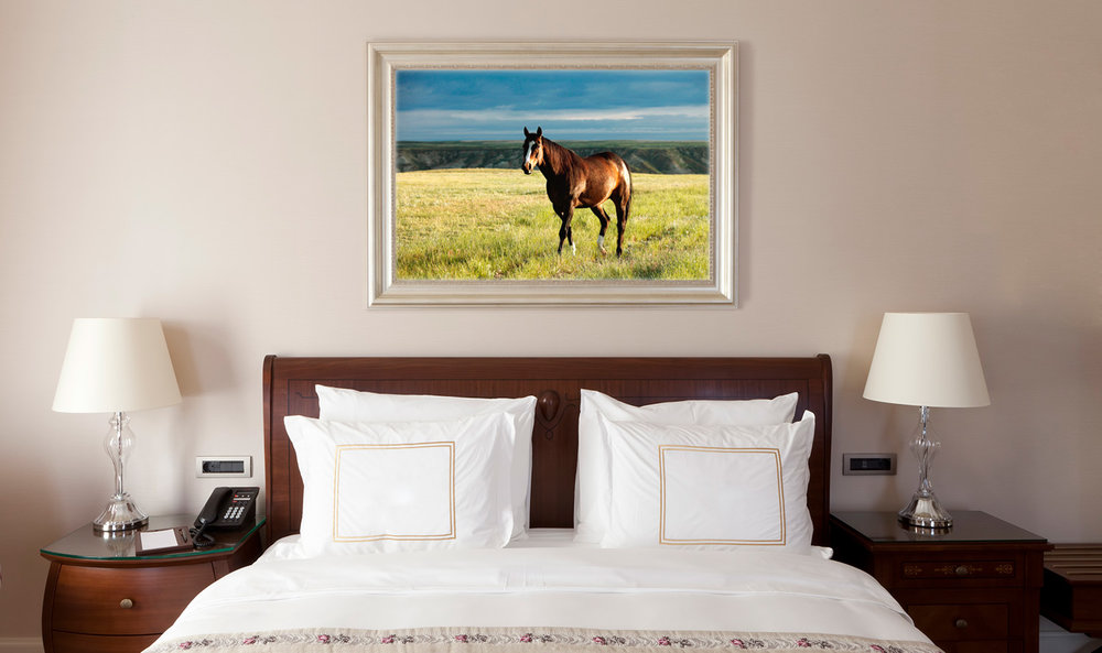 Montana-Commercial-Art-Cover-Photos.jpg