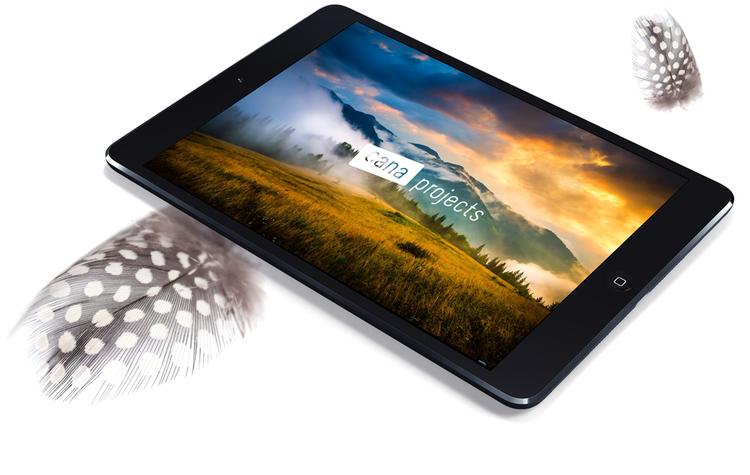 iPad-Mini-Mockup-v2f.jpg