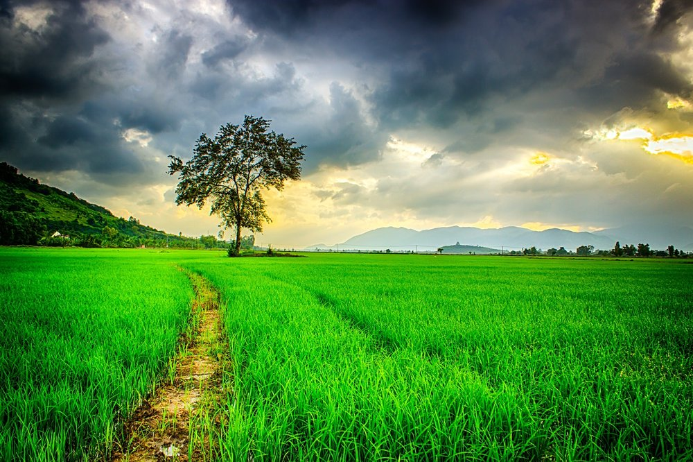 clouds-cloudy-countryside-236047.jpg