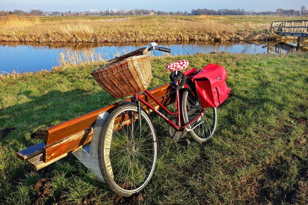 bicycle-3168273_1920.jpg