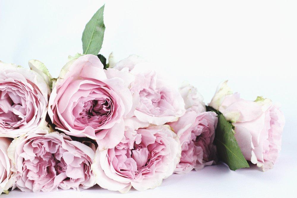 bloom-blossom-bouquet-122734.jpg