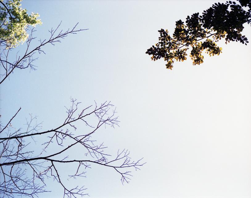skysample5.jpg