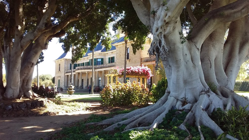 Jimbour House and gardens