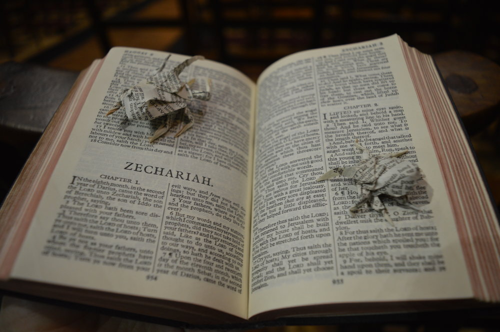 """ Biblia Membranis , camouflaged here against the pages of the King James. Many a stultified Sunday School student has mistaken tedia-induced hallucinations for a sighting of these tiny insects.""    Bible leaves, 28gsm."
